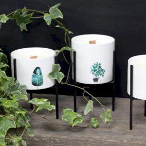 Botaniske duftlys på stativ